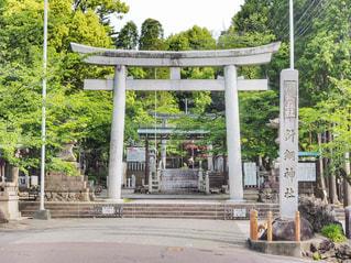 針綱神社の鳥居の写真・画像素材[1178548]