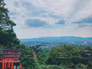 稲荷山、四つ辻からの景色の写真・画像素材[1223822]