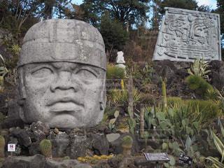伊豆シャボテン公園の像の写真・画像素材[1259229]