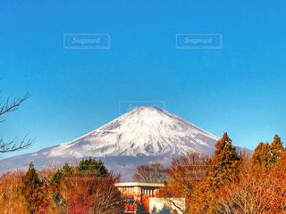 御殿場プレミアムアウトレットから見た富士山の写真・画像素材[1259236]