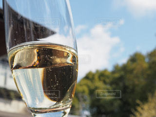ワインのガラスの写真・画像素材[1849146]
