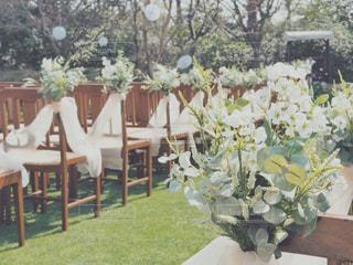 ガーデンウエディングの写真・画像素材[1849162]