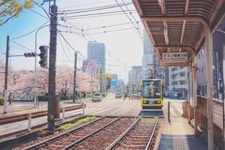 都電荒川線と桜の写真・画像素材[1885202]