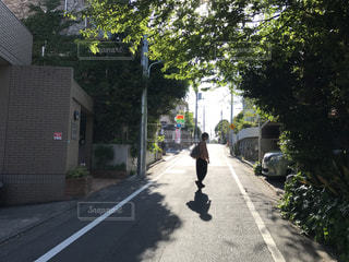散歩 - No.629210