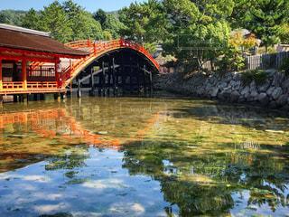 水の体の上の橋の写真・画像素材[1446621]