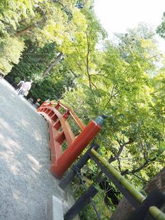 鎌倉の写真・画像素材[629938]