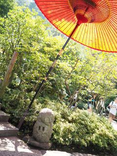 鎌倉の写真・画像素材[629940]