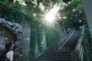 江ノ島の写真・画像素材[629941]