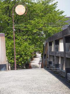 石川県の写真・画像素材[631676]