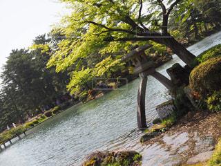 石川県の写真・画像素材[631679]