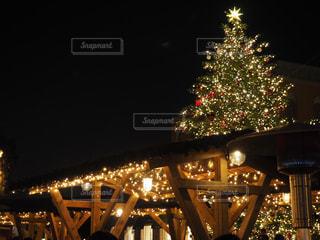クリスマスツリーの写真・画像素材[908753]
