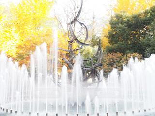 噴水と紅葉の写真・画像素材[908761]
