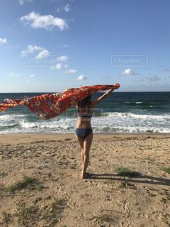 海の写真・画像素材[660483]