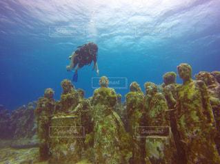 海底美術館の写真・画像素材[1847396]