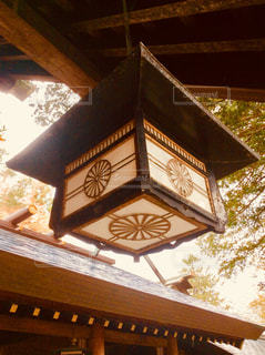 北海道神宮の写真・画像素材[855423]