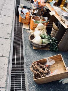 桜島大根の写真・画像素材[1000042]