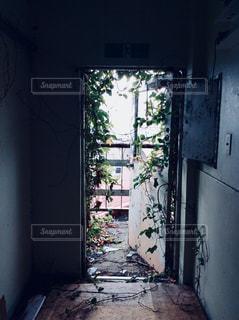 廃墟の写真・画像素材[1011203]
