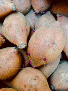 安納芋の写真・画像素材[1109897]