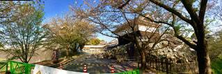 震災後の熊本城の写真・画像素材[1109974]