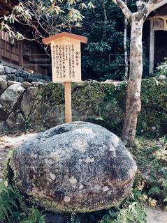 愛敬の岩の写真・画像素材[1110121]