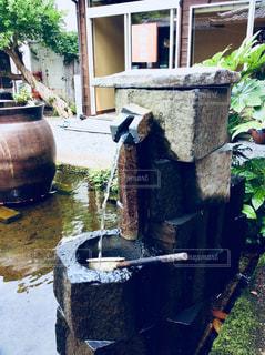 湧き水の写真・画像素材[1268156]