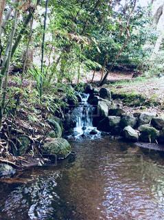 柿田川公園の写真・画像素材[1268162]