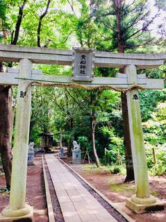 貴船神社の写真・画像素材[1268178]
