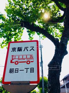 バス停🚏の写真・画像素材[1311524]