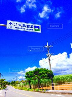 久米島空港への道の写真・画像素材[1462991]