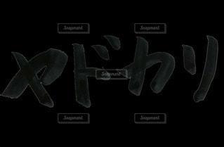 ヤドカリの写真・画像素材[2836821]