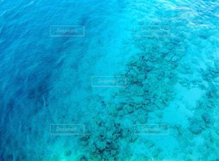 海の色の写真・画像素材[3295392]