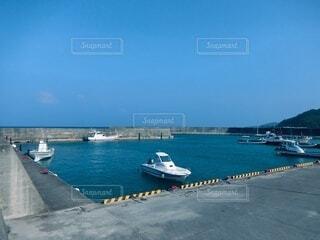 漁港の写真・画像素材[3666513]