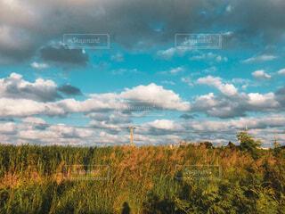 秋色の風景の写真・画像素材[3781363]