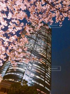 市の塔の写真・画像素材[1876272]