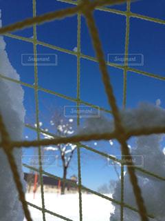 雪の写真・画像素材[632146]