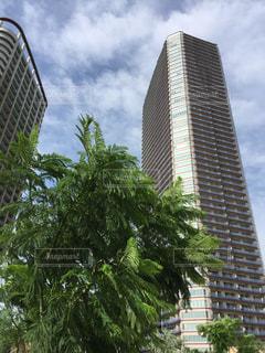背の高い建物の写真・画像素材[705695]