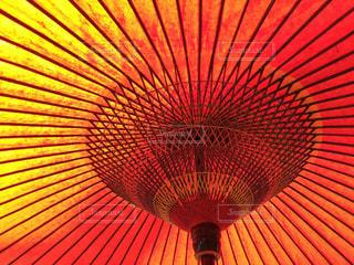 大きな赤い傘の写真・画像素材[717604]