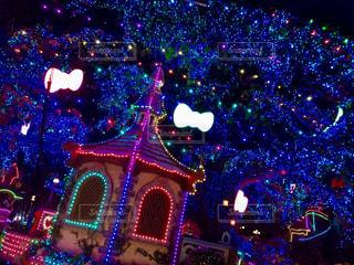 夜ライトアップされたクリスマス ツリーの写真・画像素材[737045]