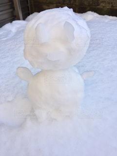 雪の中で動物のぬいぐるみの写真・画像素材[974109]