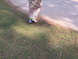芝生の写真・画像素材[631393]