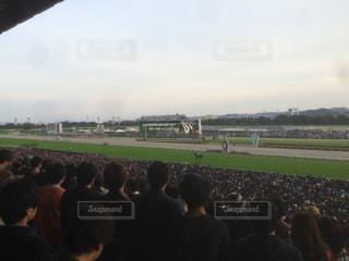 東京競馬場の写真・画像素材[631649]
