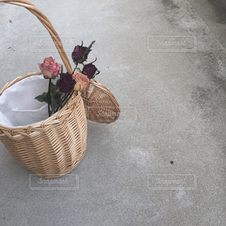 夏の写真・画像素材[631748]