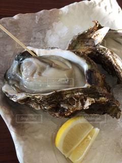 牡蠣の写真・画像素材[635899]