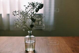 花の写真・画像素材[371906]