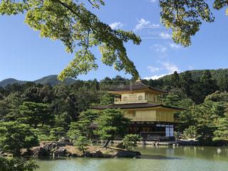 京都の写真・画像素材[676809]
