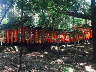京都 - No.632957