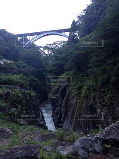 橋の写真・画像素材[683824]