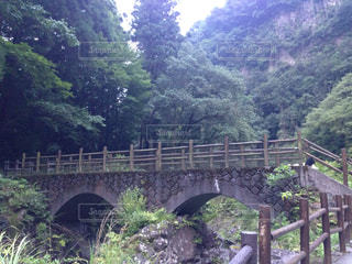 橋の写真・画像素材[683825]