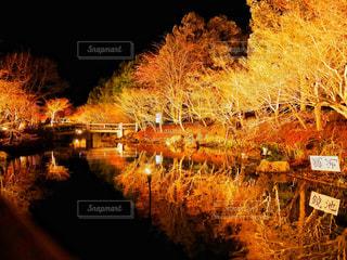 水の体の上の橋の写真・画像素材[1830011]