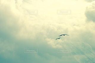 空の写真・画像素材[642849]